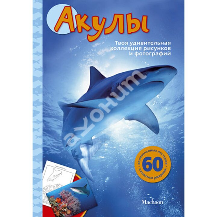 Акулы - Сэл Эмма (978-5-389-04174-5)