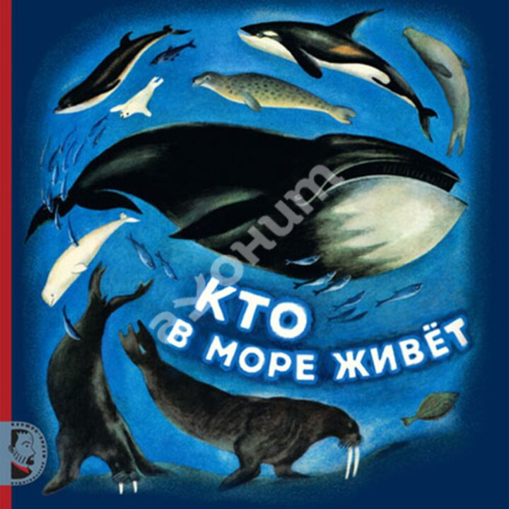 Кто в море живет - Святослав Сахарнов (978-5-903979-58-5)