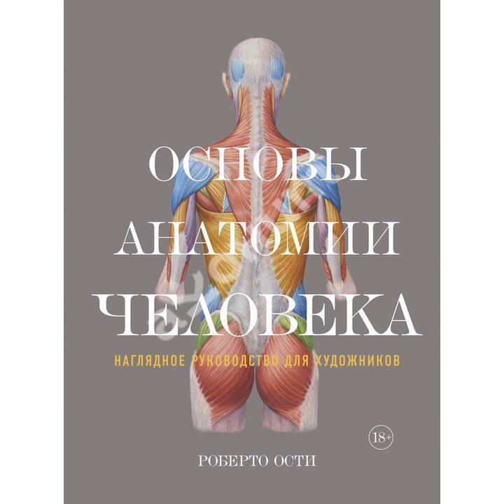 Основы анатомии человека. Наглядное руководство для художников - Роберто Ости (978-5-389-12861-3)