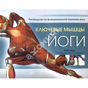 Ключові м'язи йоги