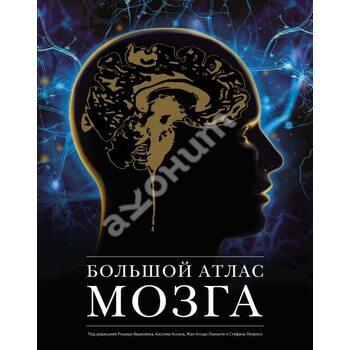 Великий атлас мозку