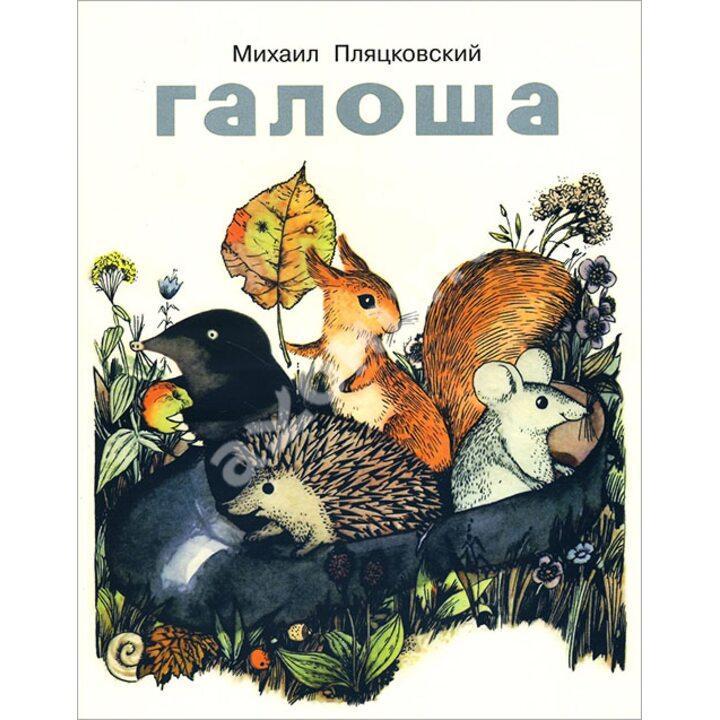 Галоша - Михаил Пляцковский (978-5-9905976-2-4)