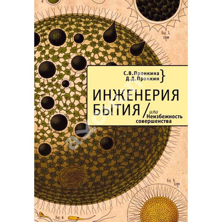 Инженерия Бытия, или Неизбежность совершенства - Д. Пронкин, С. Пронкина (978-5-91419-838-8)